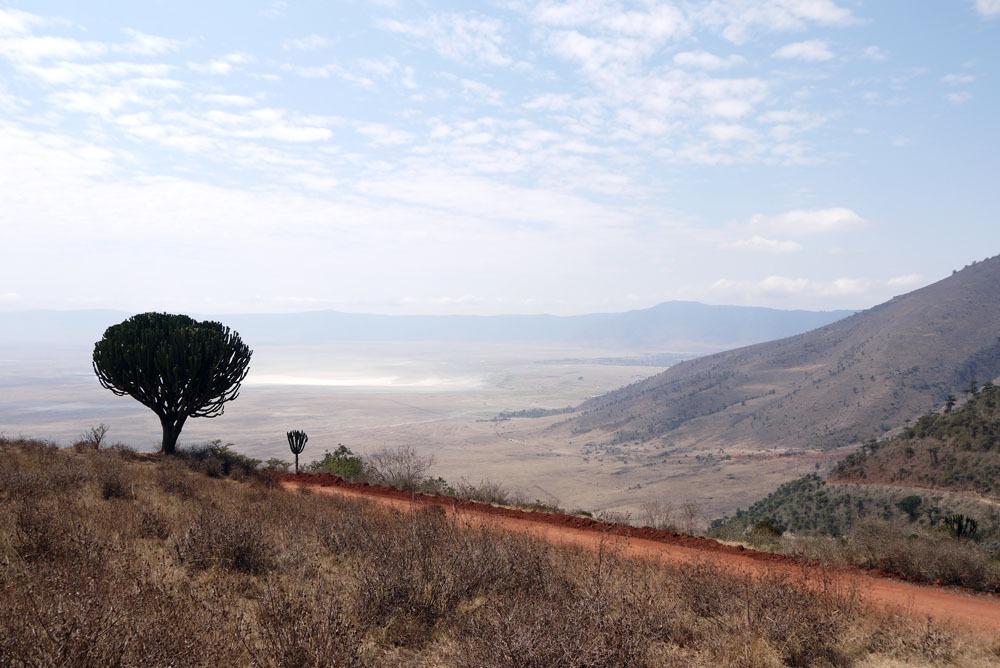 Ngorongoron kraaterin näkymiä