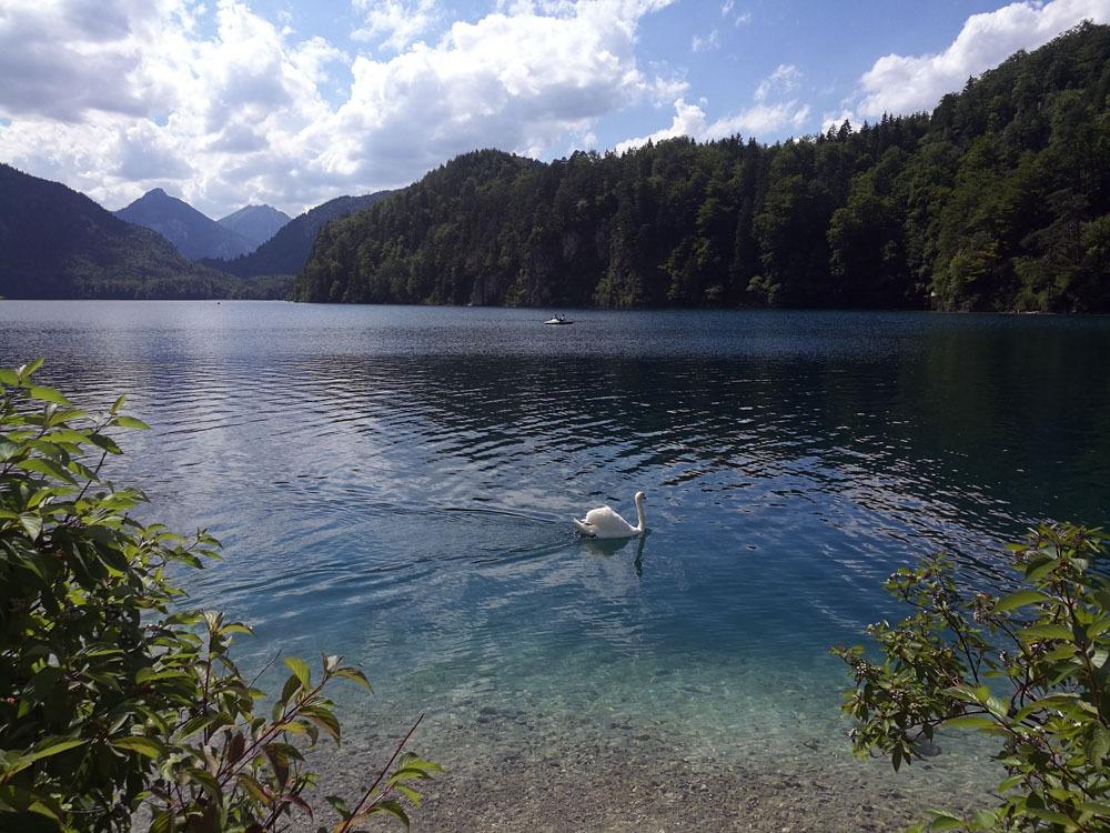 Alpsee Baijerissa Saksassa