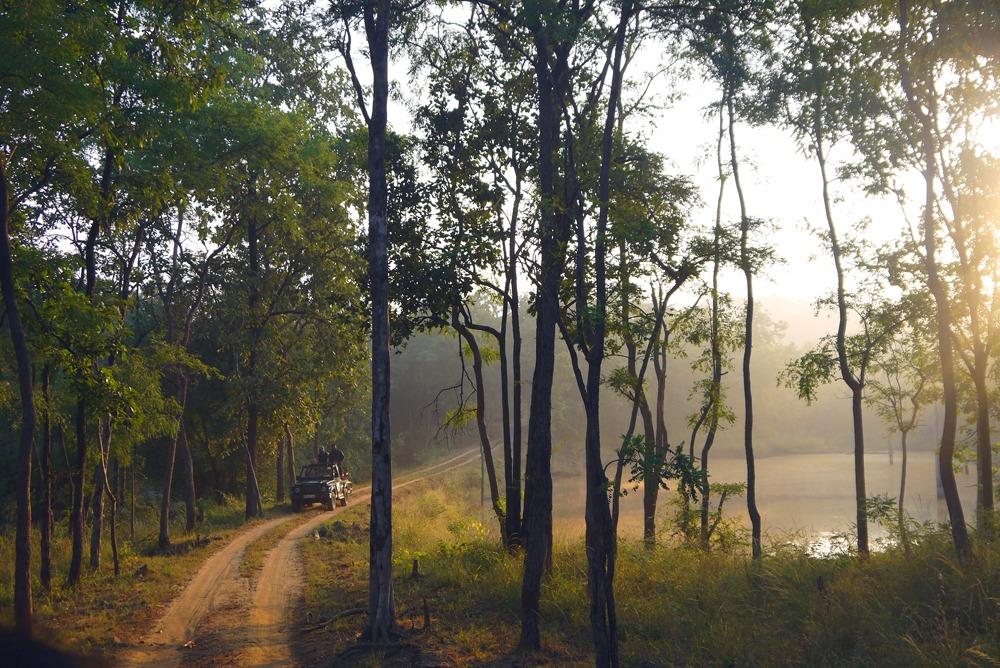 Aurinko nousee Satpuran kansallispuistossa.