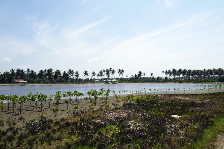 Kalpitiyan maisemia Sri Lankassa