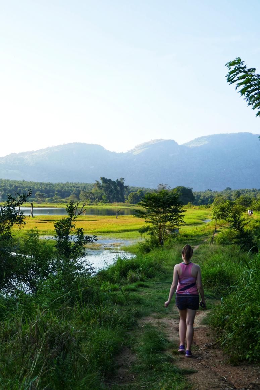 Gal Oyan kauniita maisemia Sri Lankassa