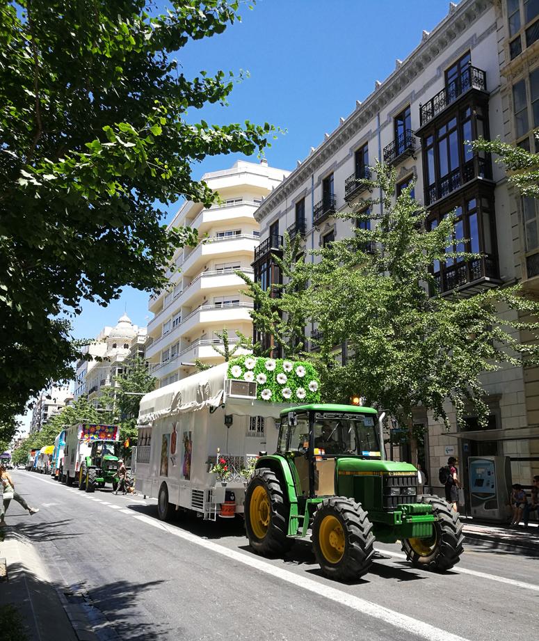 julat Granadan keskustassa