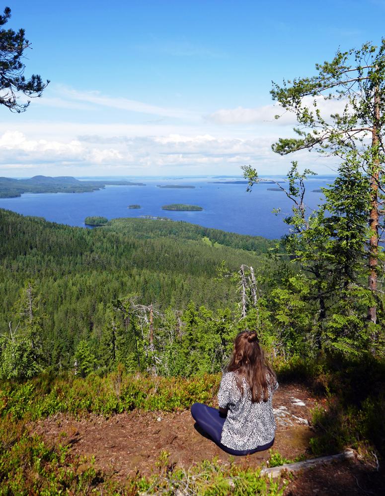 Mäkrävaaran huipulla Kolin kansallispuistossa