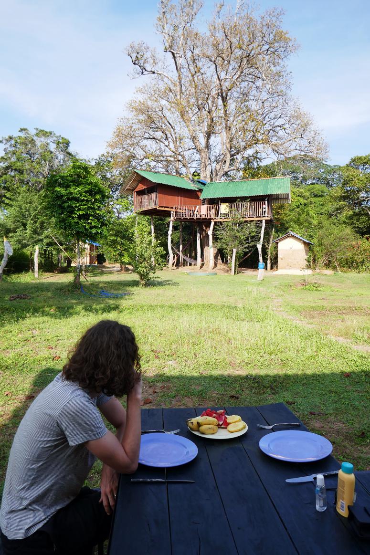 aamupalalla Sri Lankassa