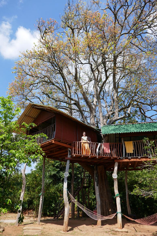 puumaja Sri Lankassa