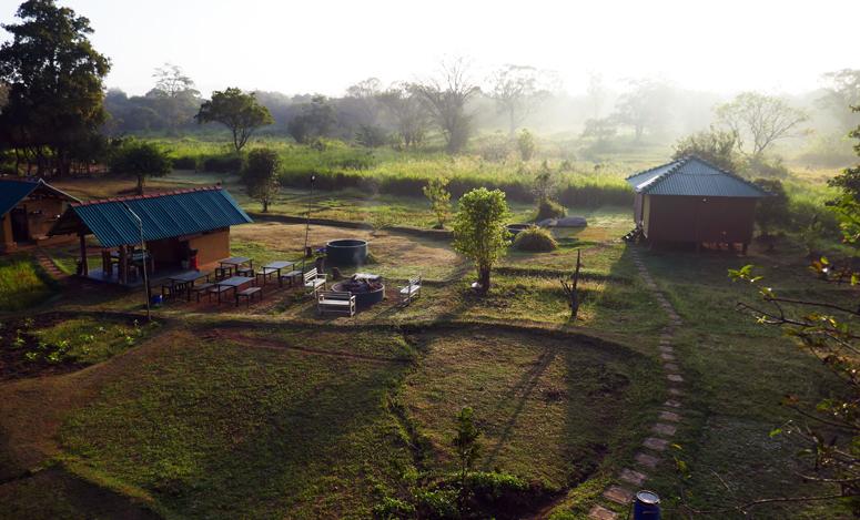 aamu Elephant Watch Hutissa Sri Lankassa