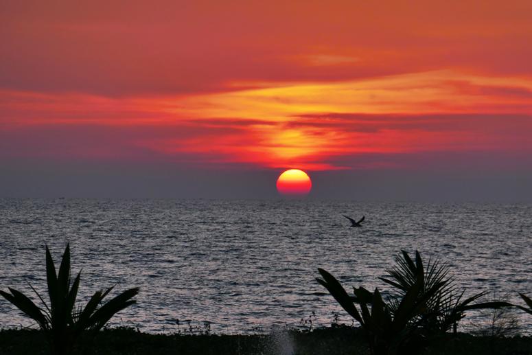 auringonlasku Sri Lankan Kalpitiyassa