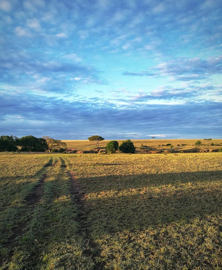 aamu Masai Marassa