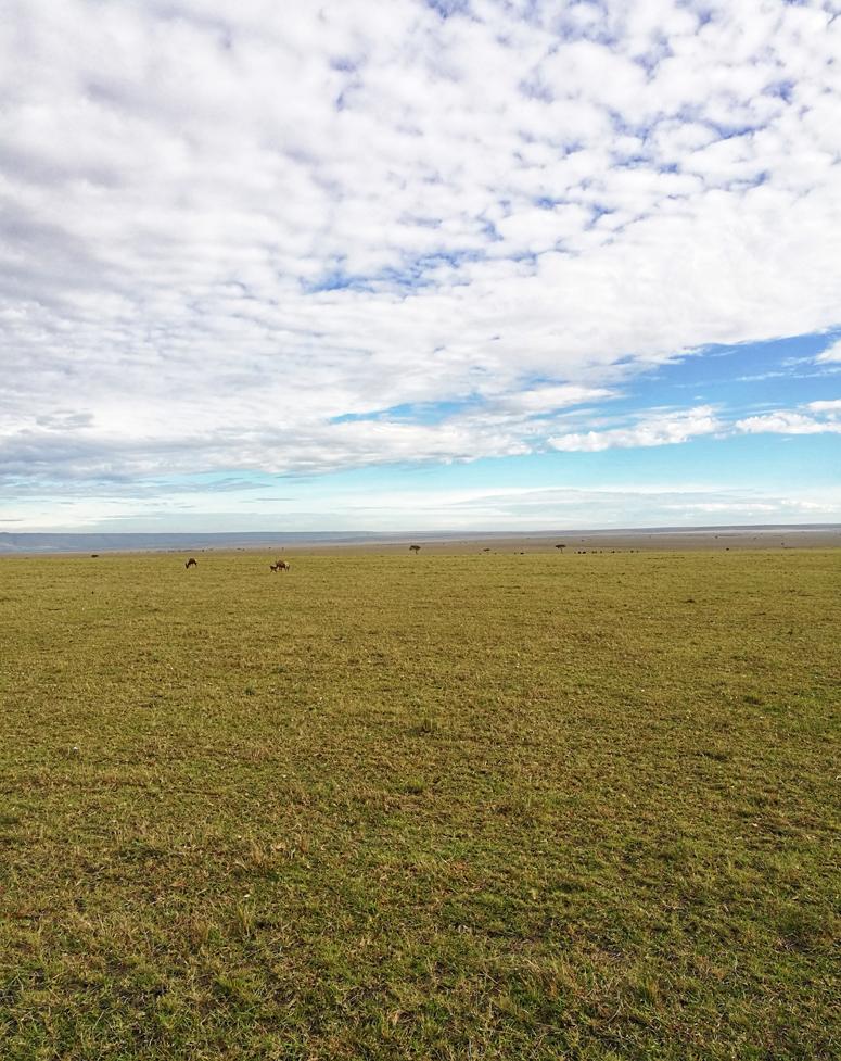Masai Maran tasangot