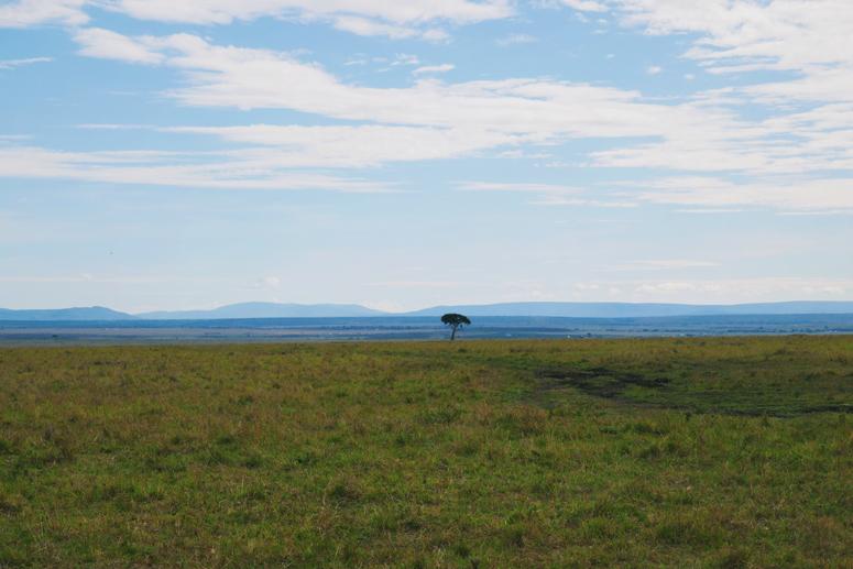 kaunis maisema Kenian Masai Marassa