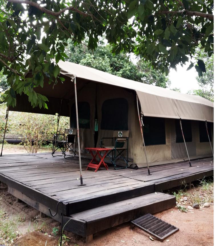 Julia's River Campin teltta Masai Marassa