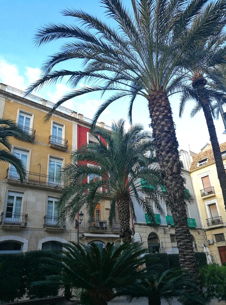 Alicanten kauniita rakennuksia