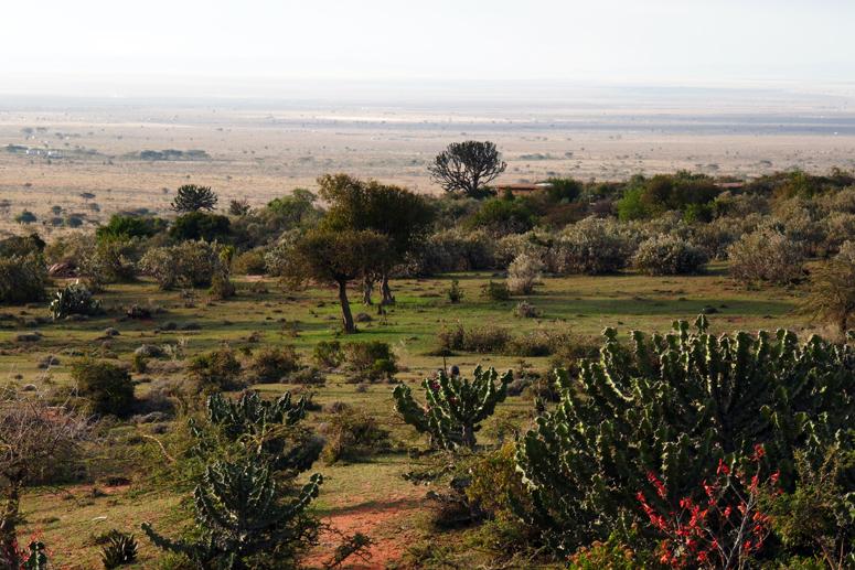 Maji Moton maisemia Keniassa