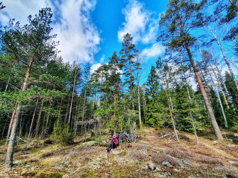 Koronaa paossa Helsingin metsässä